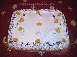 torta_leo2