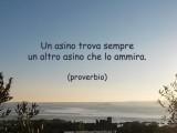 proverbio-iignoranza