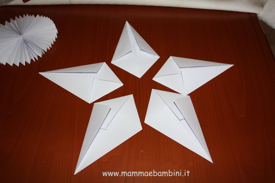 stella-natale-13