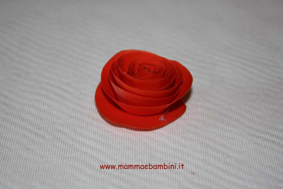 rosa-05