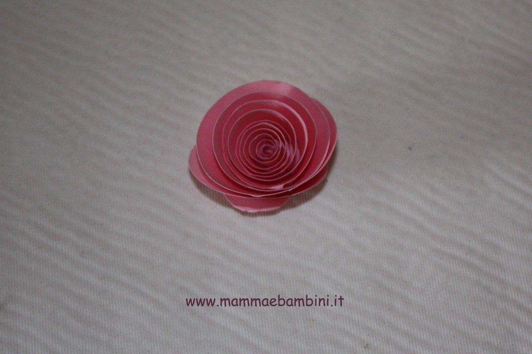 rosa-spirale-05