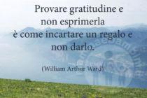 frase-gratitudine