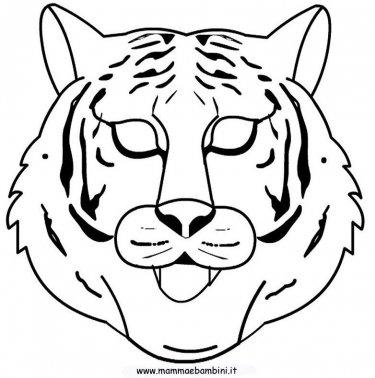 Tigre Da Disegnare Per Bambini