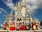 Cercasi notizie utili su Disneyland