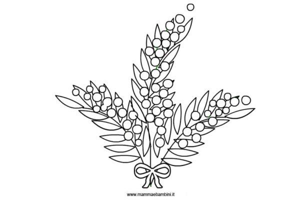 disegno mimosa da colorare