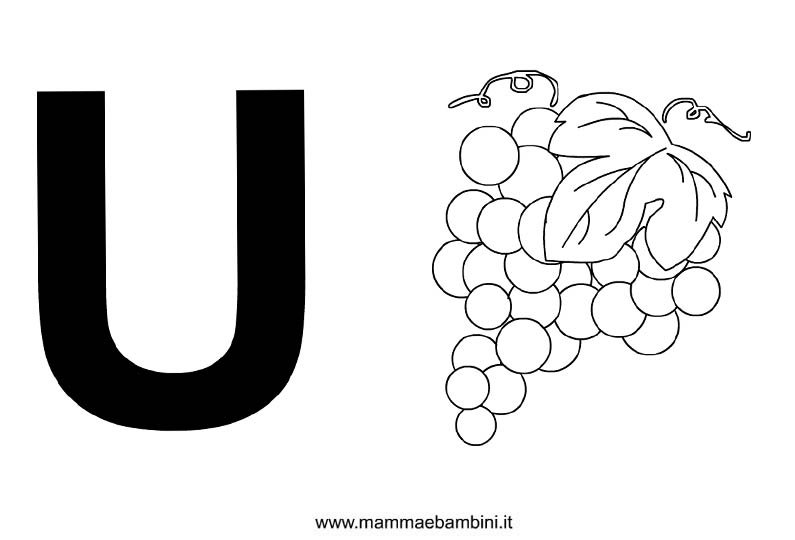 Lettera alfabeto con disegni: la U