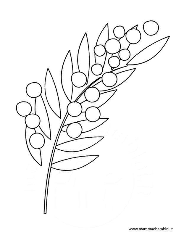 Mimosa Da Colorare.Disegno Mimosa Da Stampare E Colorare Mamma E Bambini