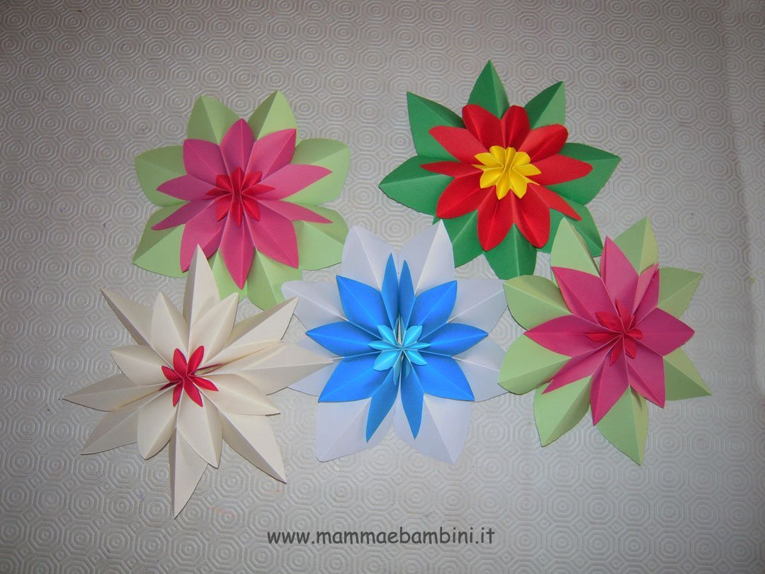 fiori-natale-03