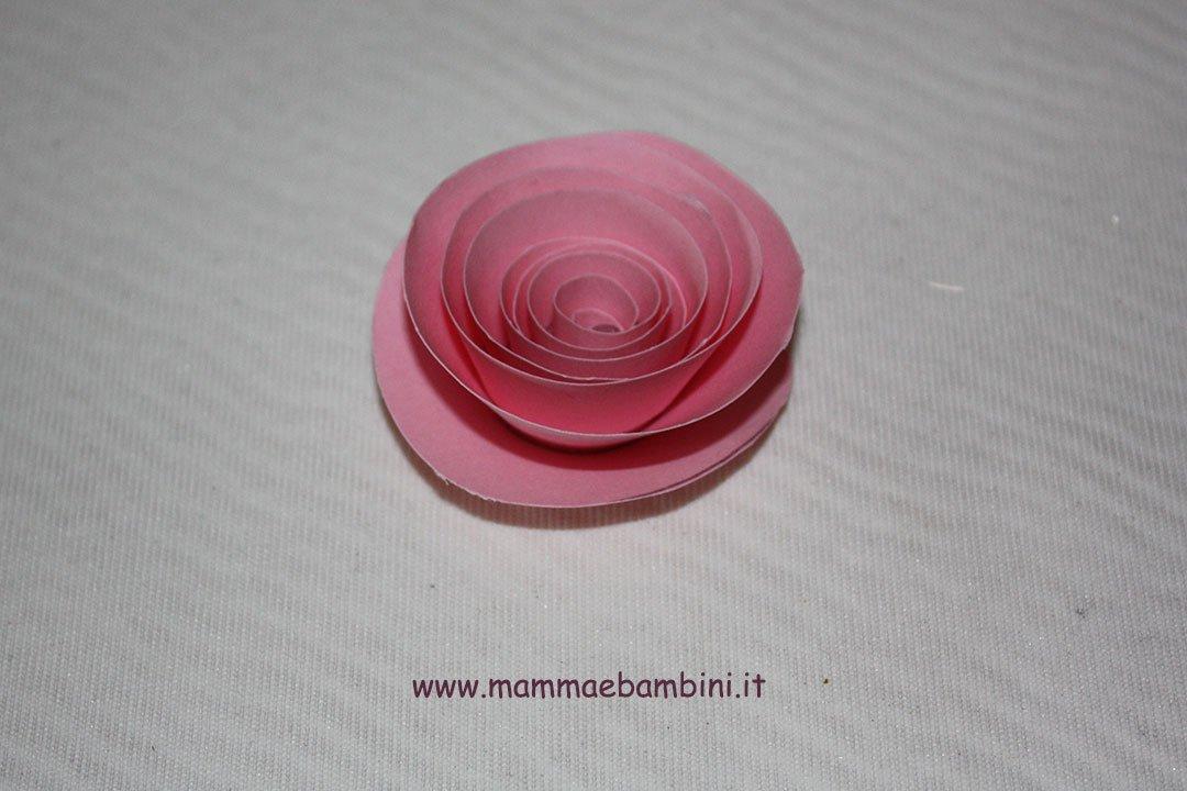 rosa-spirale-07